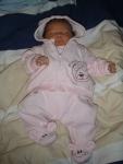 Zaphir 10 dagar gammal